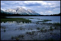 Bonaza ridge seen above a pond at the base of Mt Donoho, afternoon. Wrangell-St Elias National Park ( color)