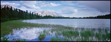 Reeds, pond, and mountains with open horizon. Wrangell-St Elias National Park (Panoramic color)
