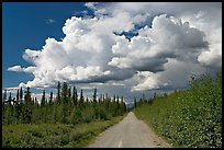 Mc Carthy road and afternoon thunderstorm clouds. Wrangell-St Elias National Park ( color)
