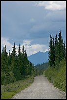 McCarthy road. Wrangell-St Elias National Park ( color)