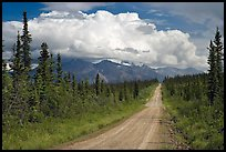 Nabesna Road, mid-afternoon. Wrangell-St Elias National Park ( color)