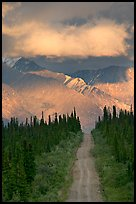 Road leading to mountains and clould lit by sunset light. Wrangell-St Elias National Park ( color)