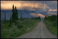 Nabena road at sunset with last light on mountains. Wrangell-St Elias National Park ( color)