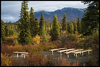 Amphitheater, Kendesnii campground. Wrangell-St Elias National Park ( color)