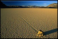Tracks, moving rock on the Racetrack, late afternoon. Death Valley National Park ( color)