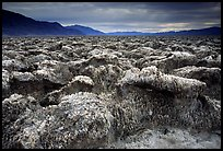 Salt formations, Devil's golf course. Death Valley National Park, California, USA. (color)