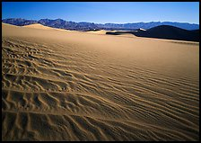 Ripples on Mesquite Dunes, early morning. Death Valley National Park ( color)