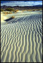 Ripples on Mesquite Sand Dunes. Death Valley National Park ( color)
