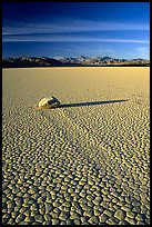 Tracks, sliding stone on the Racetrack playa, late afternoon. Death Valley National Park ( color)