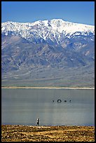 Tourist, ephemeral Loch Ness Monster in Manly Lake, and Telescope Peak. Death Valley National Park ( color)