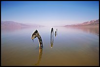 Loch Ness Monster art installation in rarissime seasonal lake. Death Valley National Park ( color)