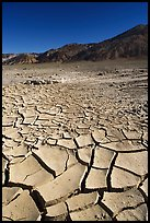 Mud cracks and Funeral mountains. Death Valley National Park ( color)