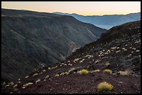 View from Father Crowley Viewpoint at sunrise. Death Valley National Park ( color)
