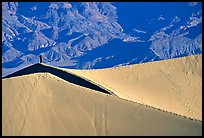 Hiker on sand dunes. Death Valley National Park, California, USA. (color)