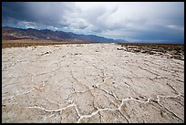 Salt evaporation ridges. Death Valley National Park ( color)