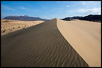 Dune ridge and ripples, Ibex Dunes. Death Valley National Park ( color)