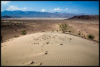 Ibex Dunes and valley. Death Valley National Park ( color)