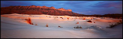 White gypsum dunes and Guadalupe range. Guadalupe Mountains National Park (Panoramic color)