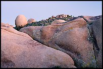 Rocks at dusk, Jumbo Rocks. Joshua Tree National Park, California, USA. (color)