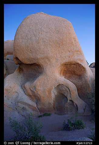 Skull rock at dusk. Joshua Tree National Park, California, USA.
