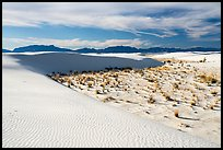 Backcountry camping area. White Sands National Park ( color)