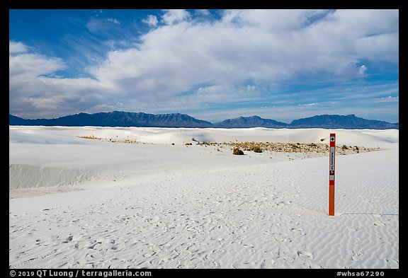 Backcountry trail. White Sands National Park (color)