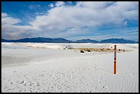 Backcountry trail. White Sands National Park ( color)