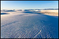 Dune field and Andres Mountains, early morning. White Sands National Park ( color)