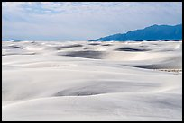 Worlds largest gypsum dune field. White Sands National Park ( color)