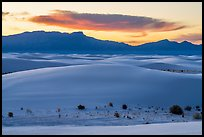 Dunes, Andres Mountains, and cloud at sunset. White Sands National Park ( color)