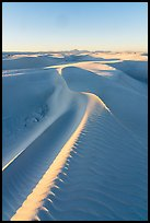Last light on dune ridges. White Sands National Park ( color)