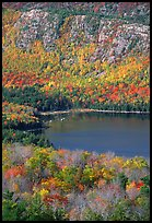 Eagle Lake, surrounded by hillsides covered with colorful trees in fall. Acadia National Park, Maine, USA.