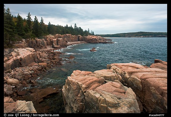 Rugged atlantic seascape near Thunder Hole. Acadia National Park (color)