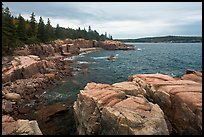Rugged atlantic seascape near Thunder Hole. Acadia National Park, Maine, USA.