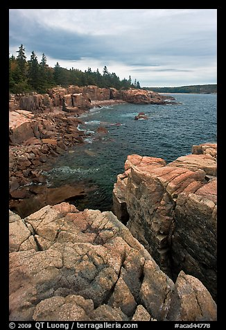 Rocky coastline near Thunder Hole. Acadia National Park (color)