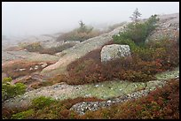 Summit of Cadillac Mountain during heavy fog. Acadia National Park, Maine, USA. (color)