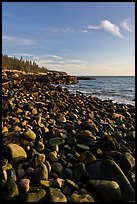 Round bouders, low tide coastline, Schoodic Peninsula. Acadia National Park, Maine, USA.