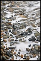 Close-up of pebbles in surf, Schoodic Peninsula. Acadia National Park, Maine, USA. (color)