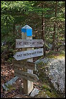 Signs at trail junction, Isle Au Haut. Acadia National Park, Maine, USA.