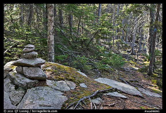 Cairn on trail, Isle Au Haut. Acadia National Park (color)