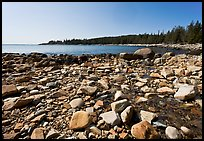 Stream on Barred Harbor beach, Isle Au Haut. Acadia National Park, Maine, USA.