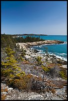 Rocky coastline, Isle Au Haut. Acadia National Park, Maine, USA.