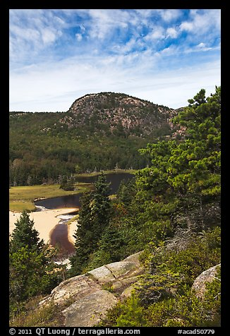 Tidal creek and Behive. Acadia National Park, Maine, USA.