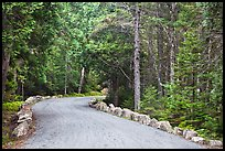 Carriage road in summer. Acadia National Park, Maine, USA.