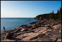 Visitor looking, near Otter Point. Acadia National Park ( color)