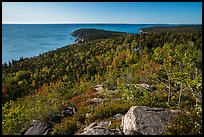 Coast and woods from Gorham Mountain. Acadia National Park ( color)