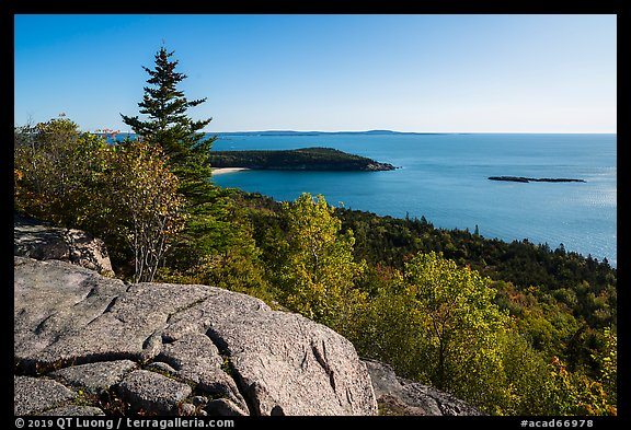 Outcrop, Sand Beach and trees from Gorham Mountain. Acadia National Park (color)