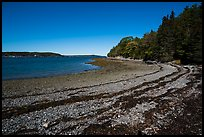 Beach around Bar Harbor Island at low tide. Acadia National Park ( color)