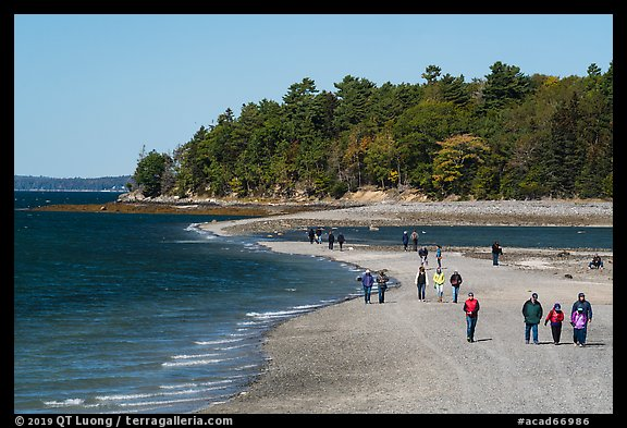 Tourists walking back from Bar Harbor Island with tide rising. Acadia National Park (color)