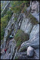 Hikers scaling cliff with iron rungs. Acadia National Park ( color)